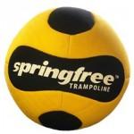 Springfree FlexrHoop Ball
